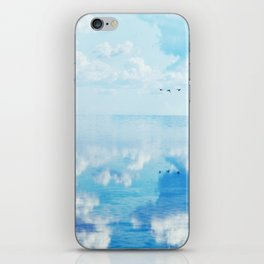 Ducks over sea iPhone Skin