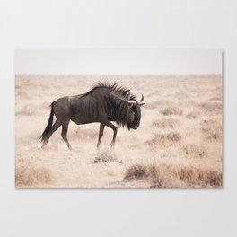 Wildebeest's long Walk Canvas Print