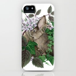 Brush Bunny iPhone Case