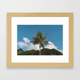Hawaiian Palm Framed Art Print