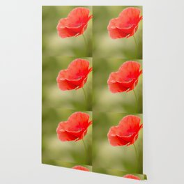 Miss you so much Red Poppy #decor #society6 Wallpaper