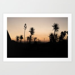 Silhouettes of Sunset Art Print