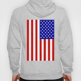 Original American flag Hoody