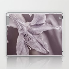 Petite Laptop & iPad Skin