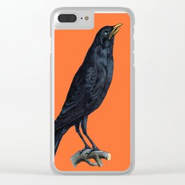 Vintage Raven Clear iPhone Case