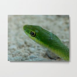 The Green Death Metal Print