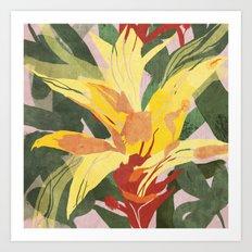 Bromeliad Art Print