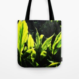Ginger leaves in the Sun wet with rain Tote Bag