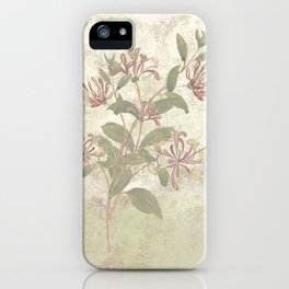Harmonies and sweet sounds iPhone Case