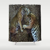 tigers Shower Curtains featuring Tigers Fighting by Wild Photography