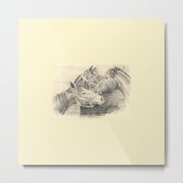 Three horses - pencil sketch Metal Print
