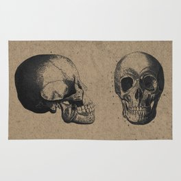 Skull View - Antique Vintage Style Medical Etching Rug