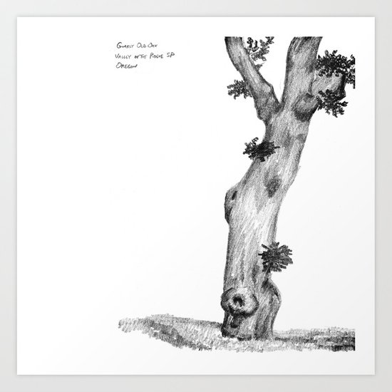 Gnarly Oak Tree Art Print