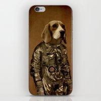 beagle iPhone & iPod Skins featuring Beagle by Durro