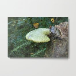 Woodland Plants Metal Print