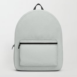 Ultra Pale Gray Solid Color Behr 2021 Color of the Year Accent Shade Tinsmith BL-W11 Backpack