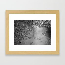 Leaves in the Canal Framed Art Print