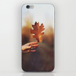 Catching a bit of Autumn iPhone Skin