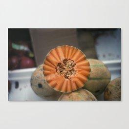 A Melon! Canvas Print