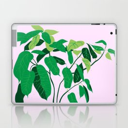ficus on pink background Laptop & iPad Skin