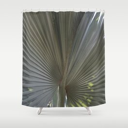 Gray Frond DP150314-16 Shower Curtain