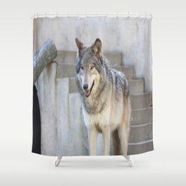 Alright, I'm ready Shower Curtain