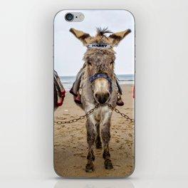 Donkeys iPhone Skin