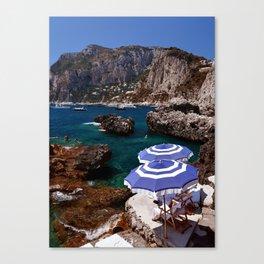 Laze Canvas Print