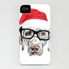 Christmas Weimaraner iPhone (4, 4s) Slim Case