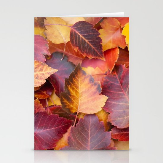 Autumn's Carpet Stationery Cards