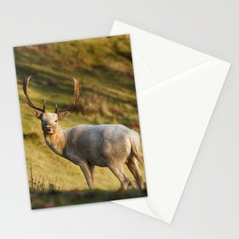 The White Hart Stationery Cards