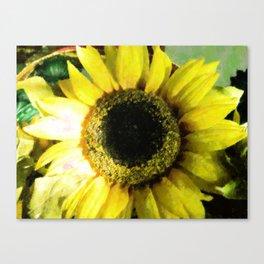 Sunflower Bold Canvas Print