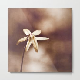 Copper Nature Photography, Modern Brown Minimalism Flower Art, Copper Botanical Minimal Print Metal Print