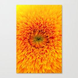A Fire that Burns Canvas Print