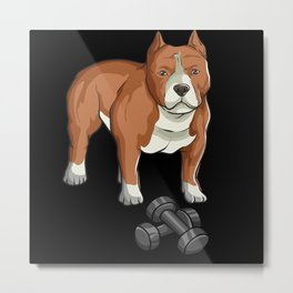Strong pit bull with dumbbells, very powerful Metal Print