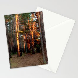 The pine forest Stationery Cards