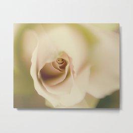 Centre of a pink rose Metal Print