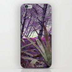 Paloma Baja iPhone & iPod Skin