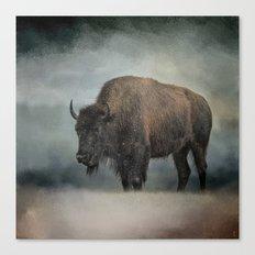 Stormy Day - Buffalo - Wildlife Canvas Print