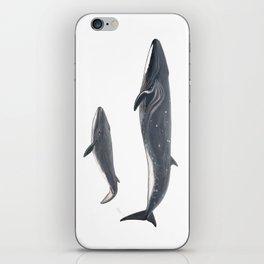 Sei whale (Balaenoptera borealis) iPhone Skin