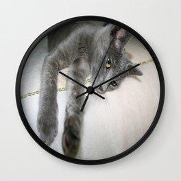 Russian Grey Cross Tabby Cat  Wall Clock