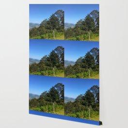 Pyrenean trees Wallpaper