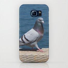Pigeon2 iPhone Case