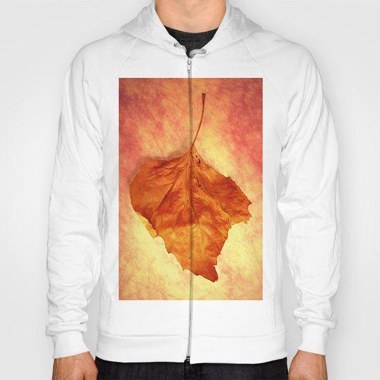 Autumn Cometh Hoody