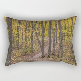 Fall on the Minnesota North Shore's Superior Hiking Trail Rectangular Pillow