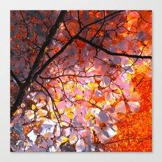autumn tree VI Canvas Print