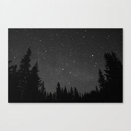 a speck of dust Canvas Print