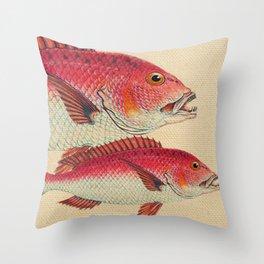 Fish Classic Designs 7 Throw Pillow