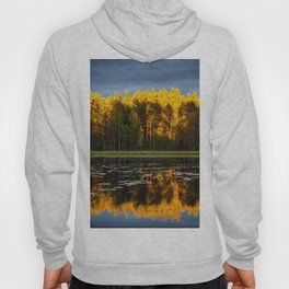 Fall Reflection Hoody