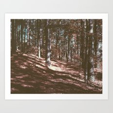 red fall Art Print